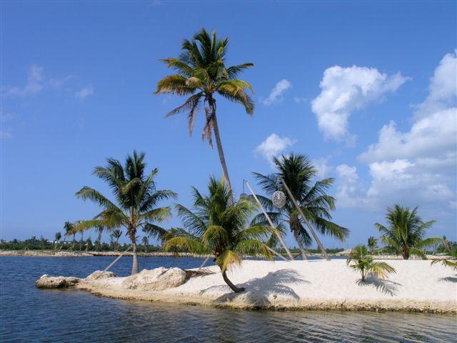 Camana Bay